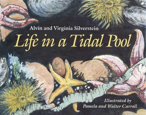 Download Life in a tidal pool